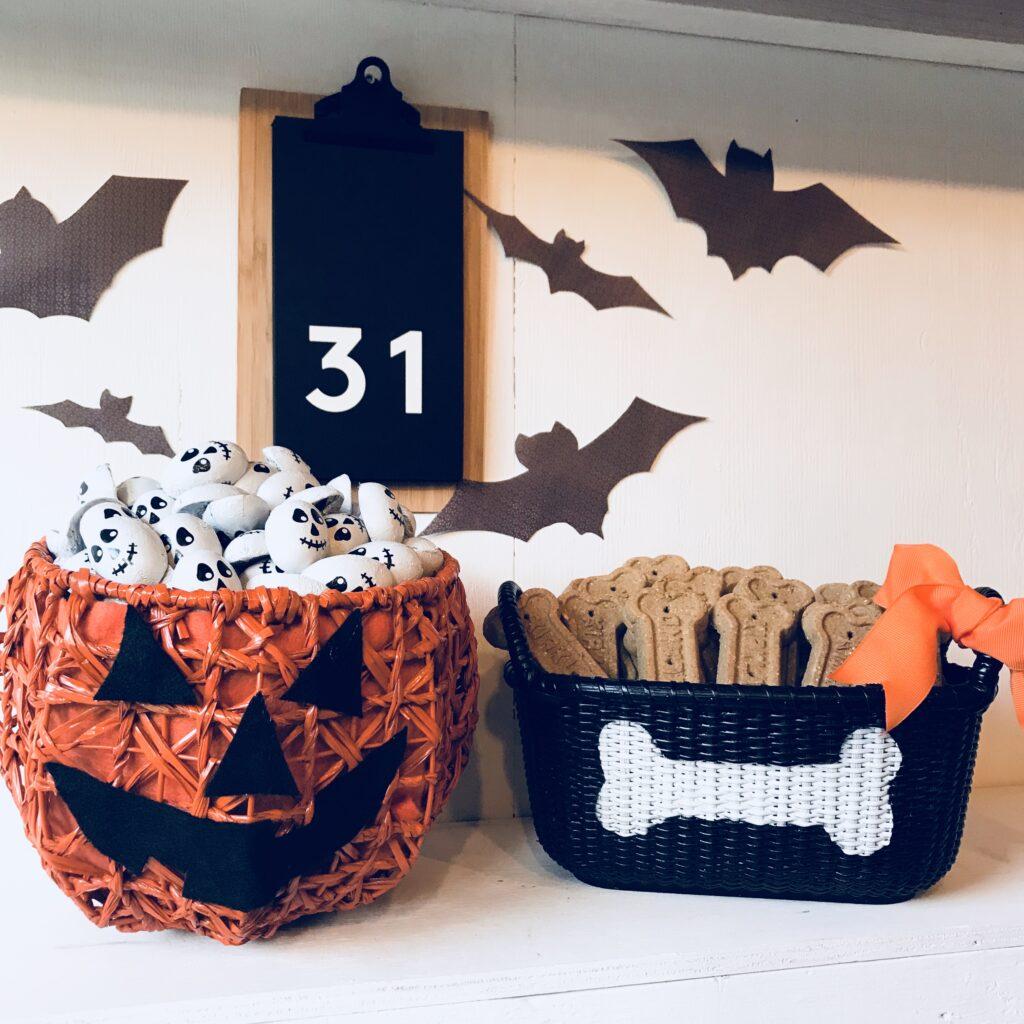 pumpkin dog baskets